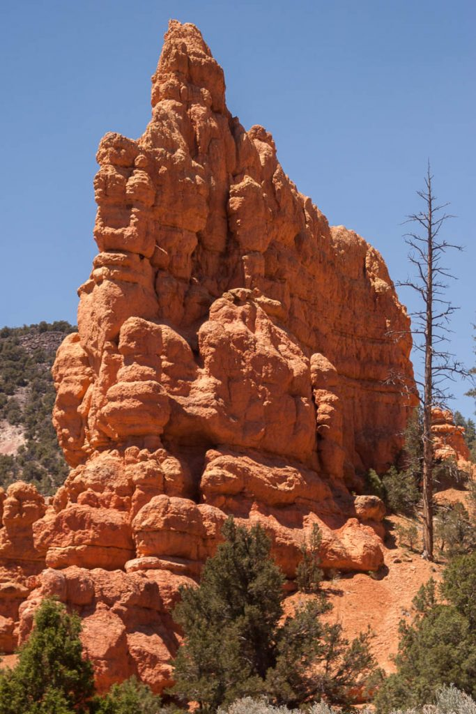 Rotsen,Red Canyon, Dixie National Forest, Utah, Verenigde Staten (2006)