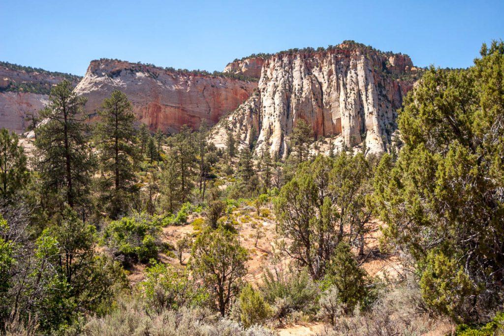 Rotsen,Zion National Park, Utah, Verenigde Staten (2006)