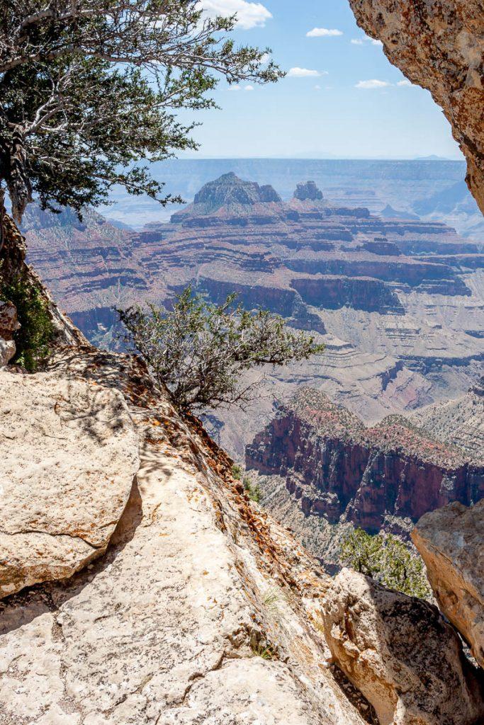 Wat een uitzicht!,Grand Canyon National Park, Arizona, Verenigde Staten (2006)