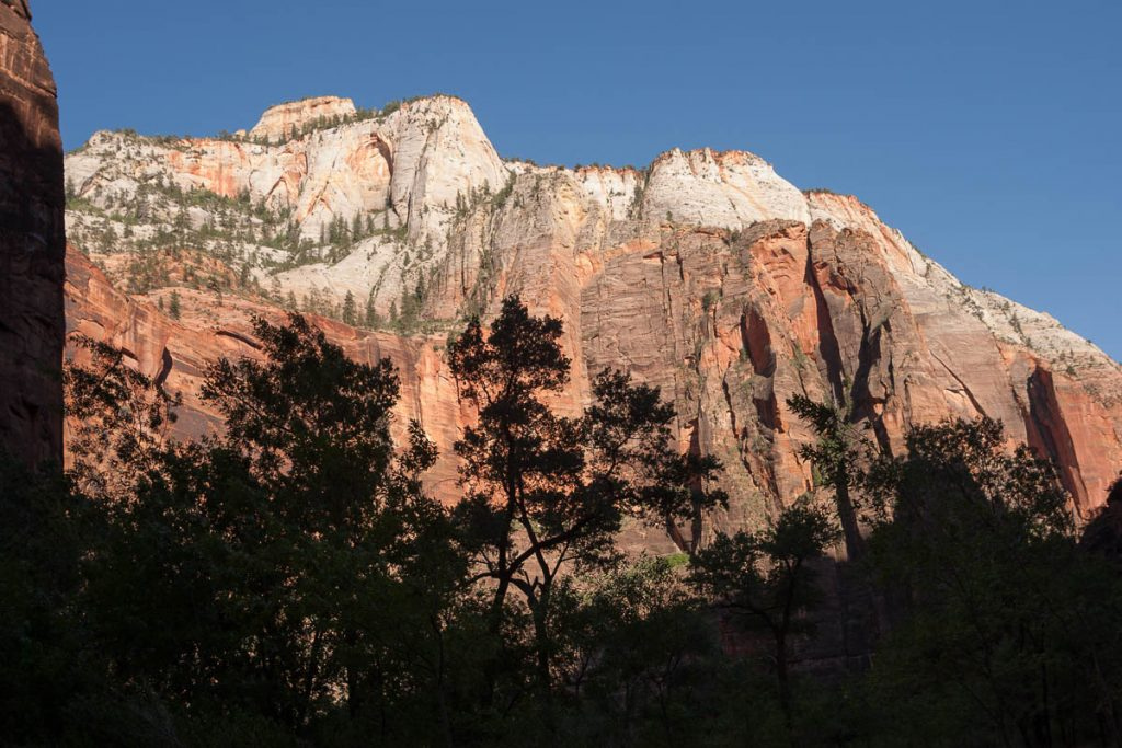 Red White Rock Wall,Zion National Park, Utah, Verenigde Staten (2006)