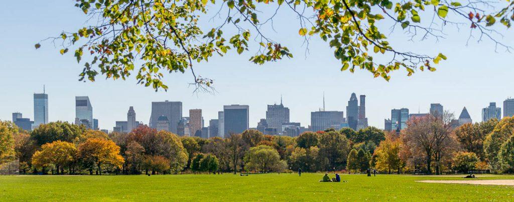 Recreatie grasveld,Central Park, New York, New York, Verenigde Staten (2010)