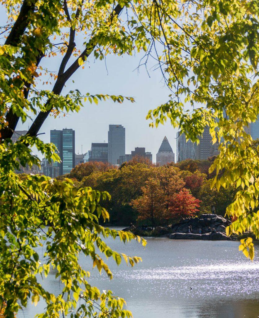 Doorkijkje,Central Park, New York, New York, Verenigde Staten (2010)