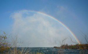 Regenboog boven de Horseshoe Falls