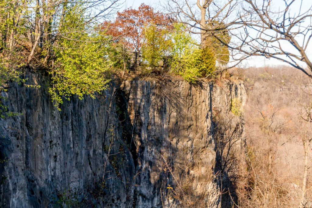 Klif,Niagara Glen Nature Reserve, Niagara Falls, Ontario, Canada (2010)