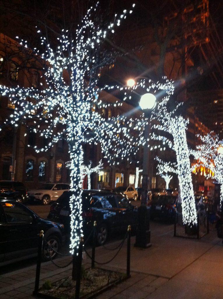 Verlichtte bomen,Toronto, Ontario, Canada (2010)