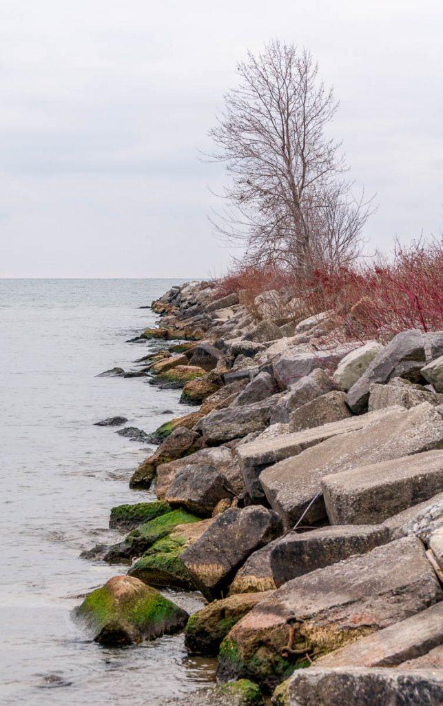 Waterlijn,Toronto Island, Toronto, Ontario, Canada (2010)