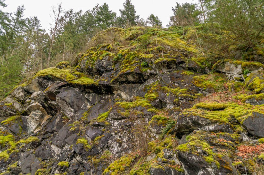 Mossige rotsen,Fraser Valley, British Columbia, Canada (2010)
