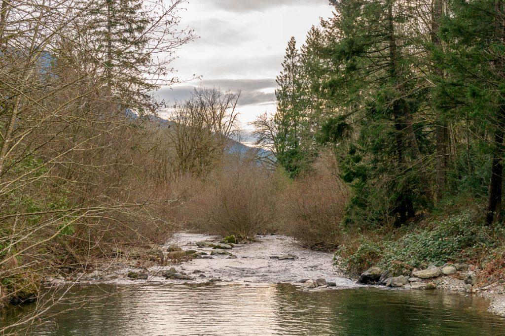 Water,Fraser Valley, British Columbia, Canada (2010)