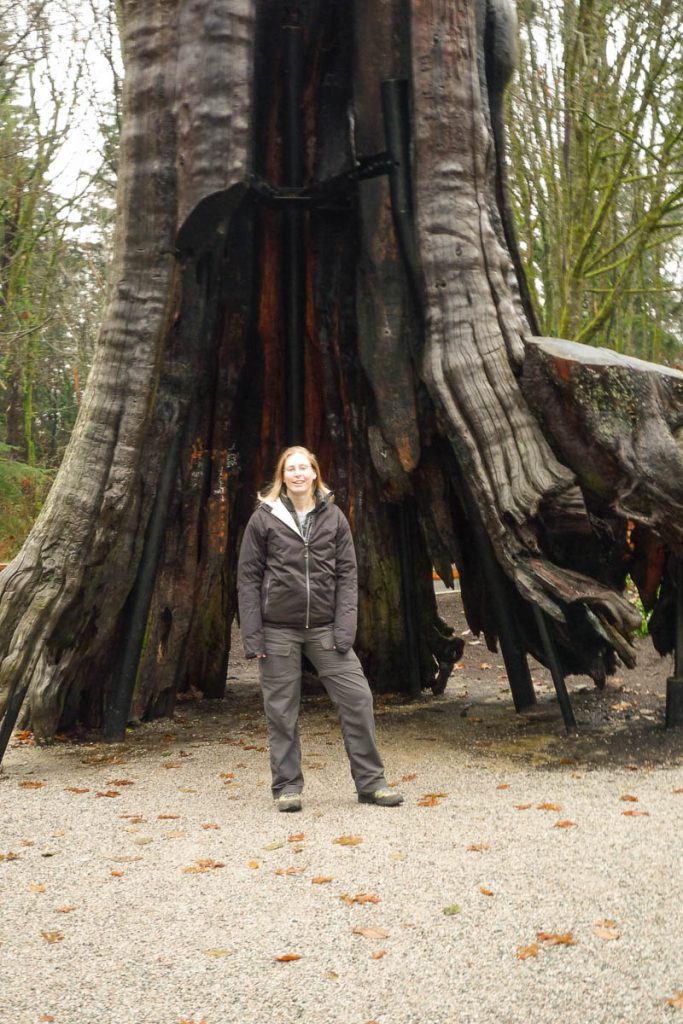 Hollow Tree,Stanley Park, Vancouver, British Columbia, Canada (2010)