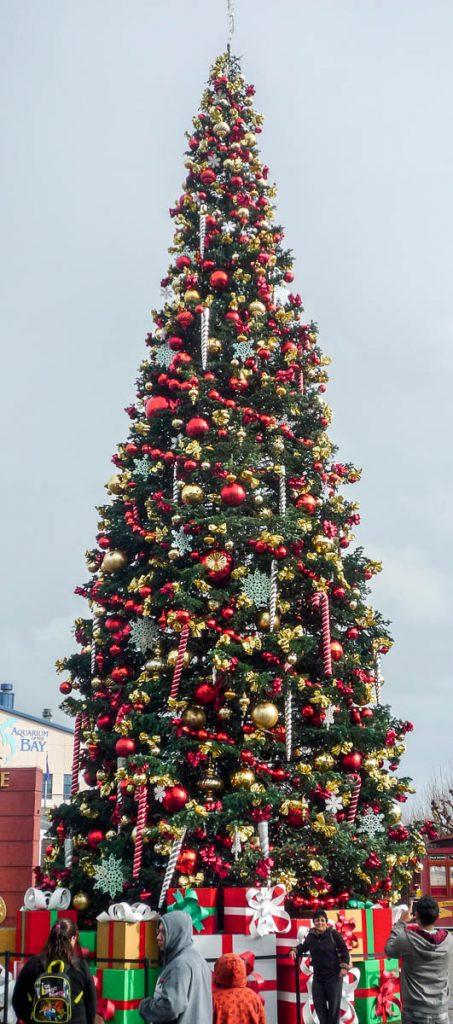 Kerstboom,Pier 39, San Francisco, Californië, Verenigde Staten (2010)