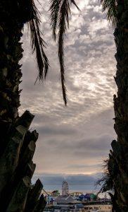 Tussen de palmen door