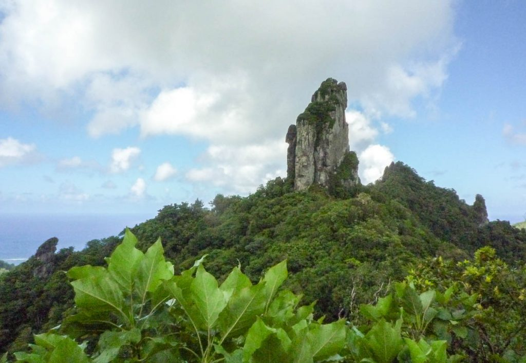 The Needle,Cross Island Trek, Rarotonga, Cook Eilanden (2011)