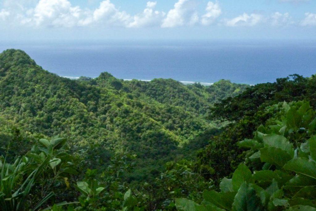 Uitzicht vanaf the Needle,Cross Island Trek, Rarotonga, Cook Eilanden (2011)