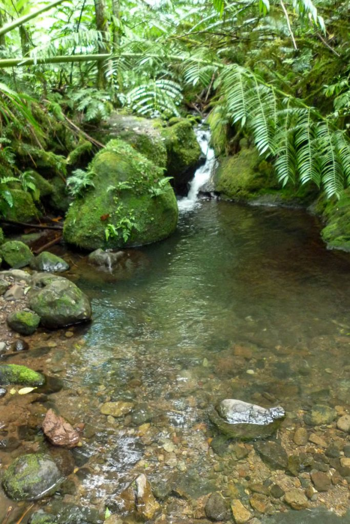 Wigmore's Waterfall,Cross Island Trek, Rarotonga, Cook Eilanden (2011)