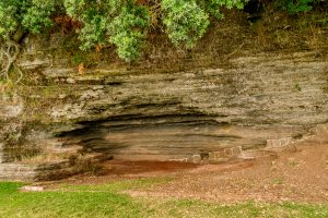 Soort van grot