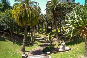 Wandeling door Myers Park