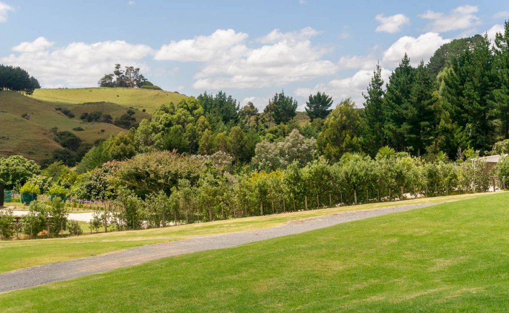 Groen,Oparau Roadhouse, Oparau, Waikato, Nieuw Zeeland (2011)