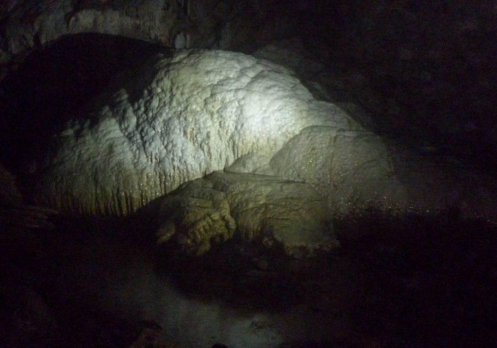 Grootste stalagmiet op het zuidelijk halfrond,Nikau Cave, Waikeratu, Auckland, Nieuw Zeeland (2011)