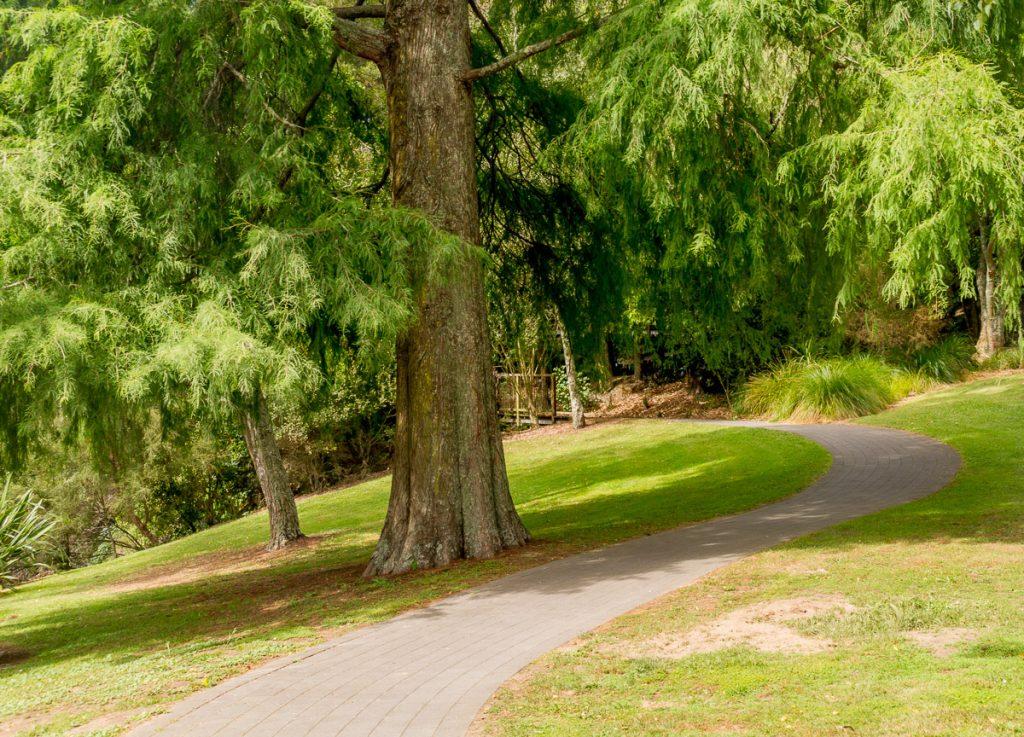 Mooie wandeling,Hamilton, Waikato, Nieuw Zeeland (2011)