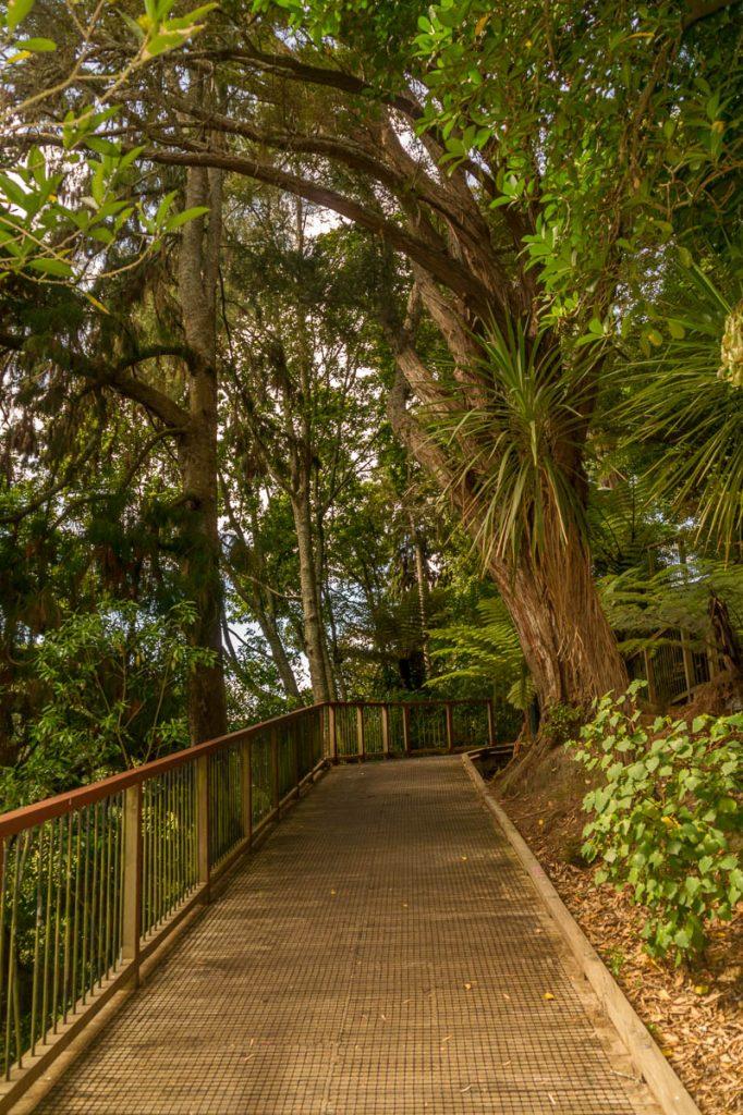 Riverwalk,Hamilton, Waikato, Nieuw Zeeland (2011)