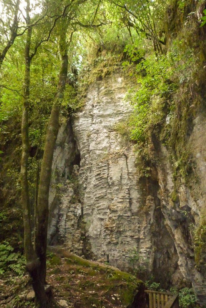 Rotsen,Ruakuri Walk, Waitomo Caves, Waikato, Nieuw Zeeland (2011)