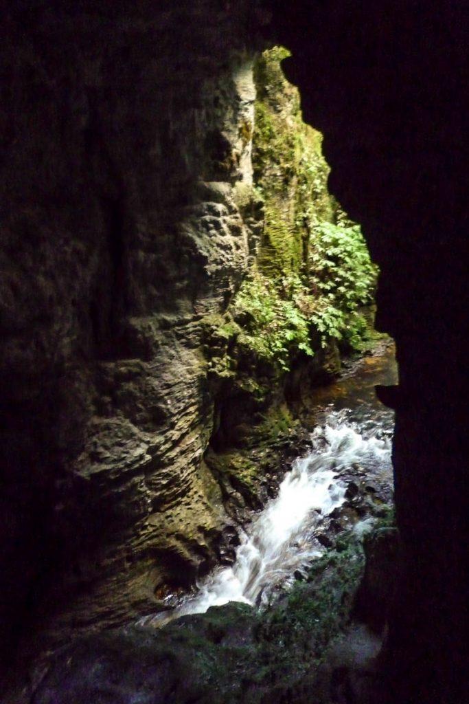 Beekje,Ruakuri Walk, Waitomo Caves, Waikato, Nieuw Zeeland (2011)