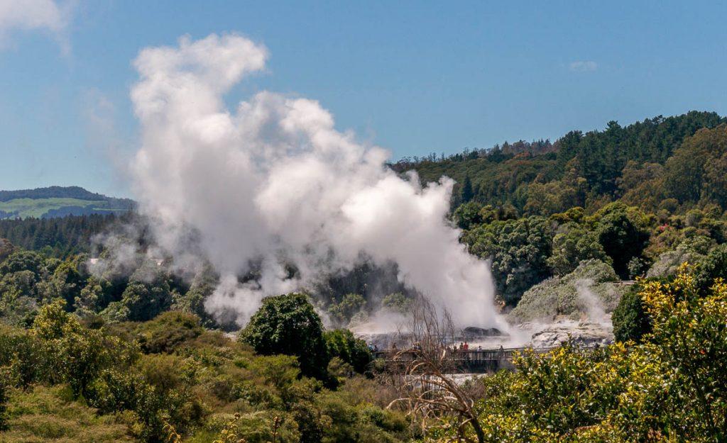 Uitzicht op de Pohutu Geiser,Te Puia, Rotorua, Bay of Plenty, Nieuw Zeeland (2011)