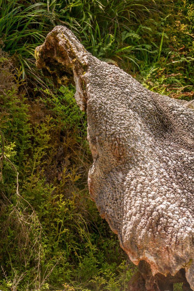 Devil's Mouth,Wairakei Thermal Valley, Wairakei, Waikato, Nieuw Zeeland (2011)