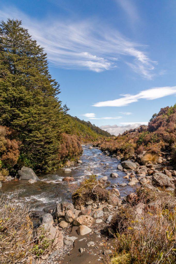 Beekje,Taranaki Falls Loop Track, Tongariro National Park, Manawatu-Wanganui, Nieuw Zeeland (2011)