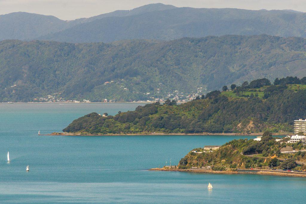 Wellington Harbour,Botanic Gardens, Wellington, Wellington, Nieuw Zeeland (2011)