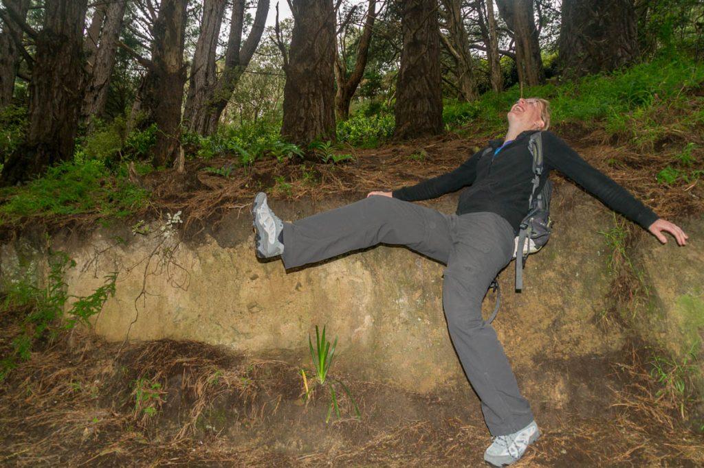 Hier vielen de hobbits net voordat ze de paddenstoelen vonden,Town Belt, Wellington, Wellington, Nieuw Zeeland (2011)