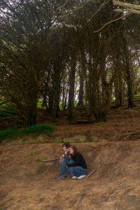 Hier stond een boomstronk waaronder de hobbits zich verstopten voor de Nazgûl