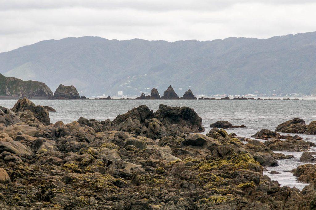 Rotsen,Mahine Memorial Park, Wellington, Wellington, Nieuw Zeeland (2011)