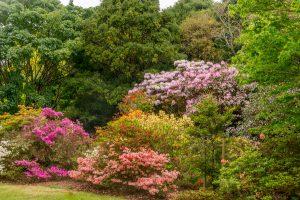 Isengard Gardens