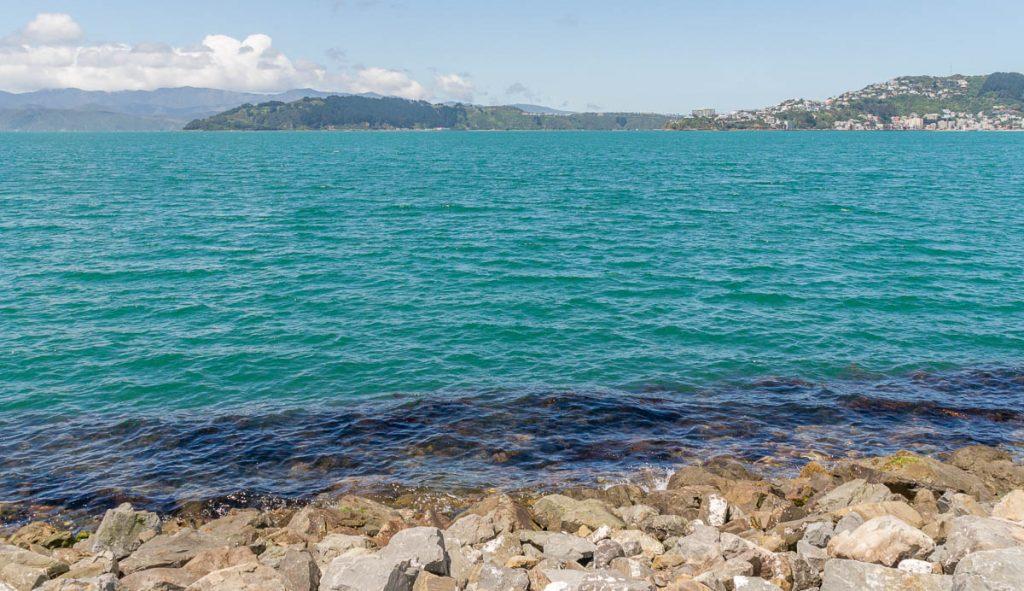 Turquoise,InterIslander , Wellington, Wellington, Nieuw Zeeland (2011)