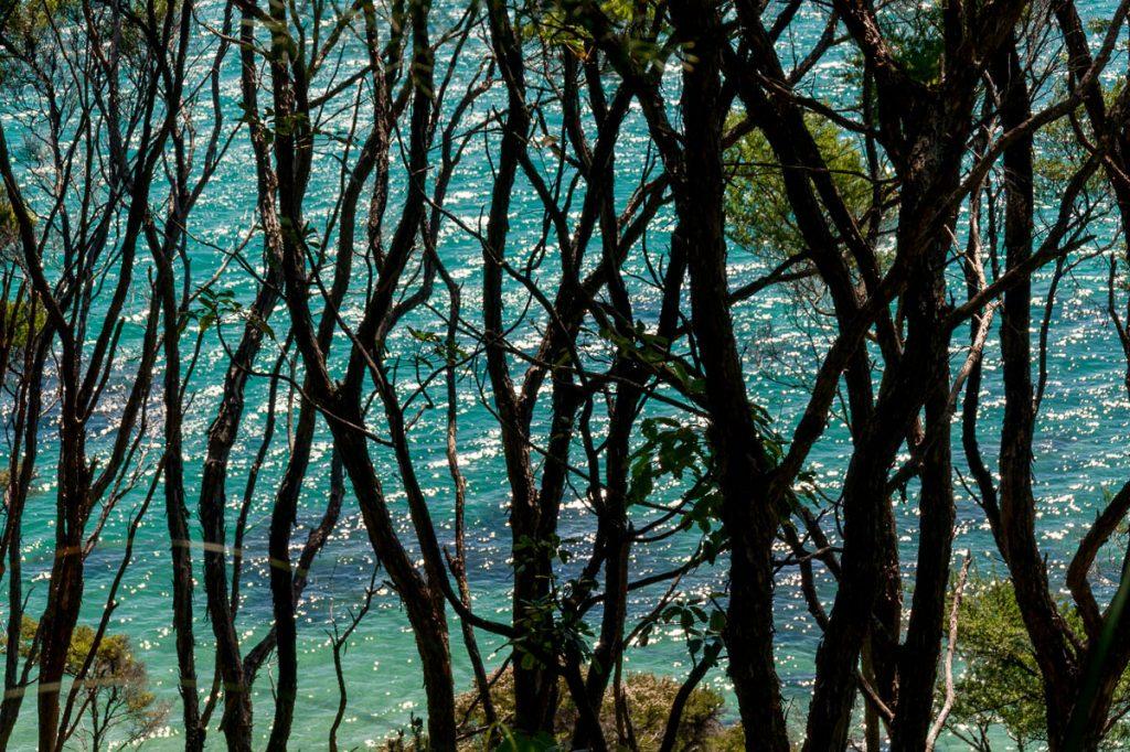 Blauw,Tonga Bay, Abel Tasman National Park, Nelson, Nieuw Zeeland (2011)