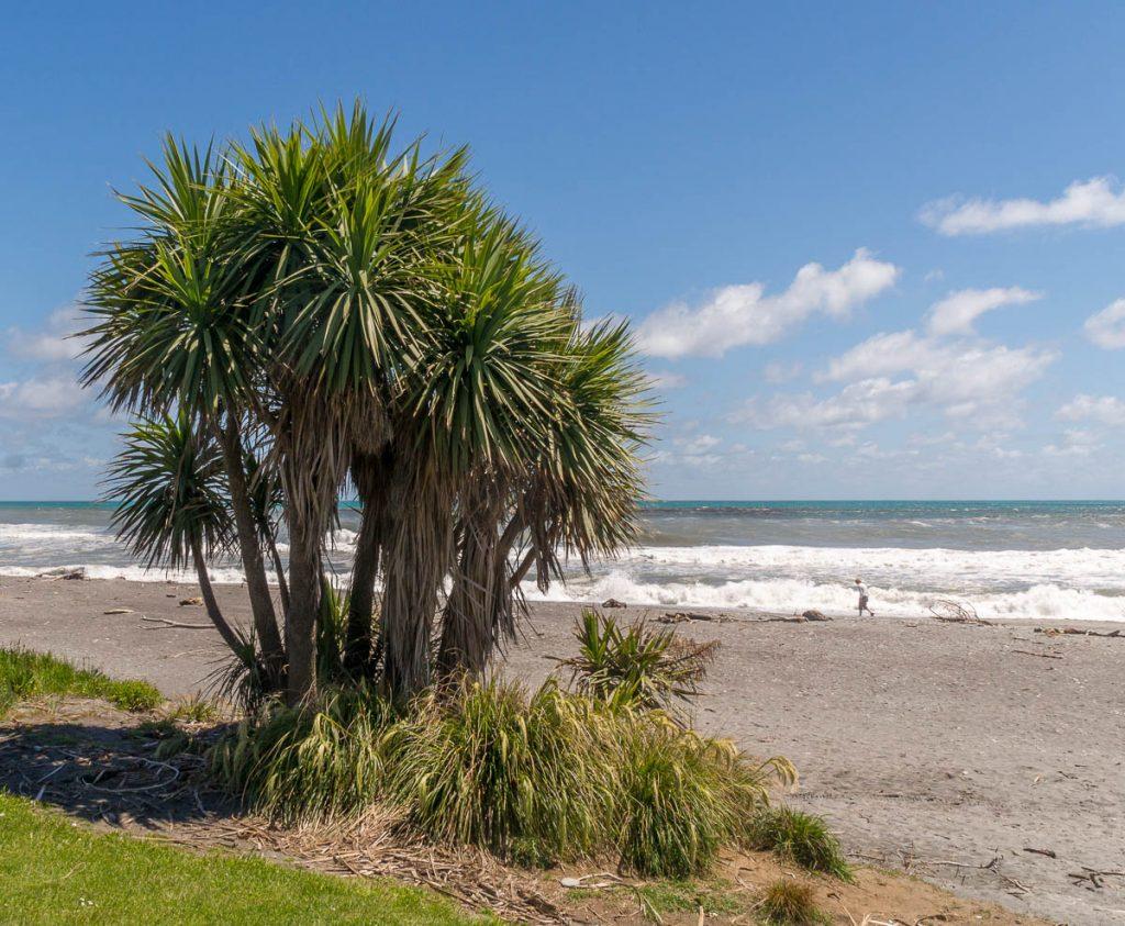 Het strand,Hokitika, West Coast, Nieuw Zeeland (2011)