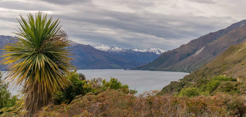 Lake Wanaka,Mt. Aspiring National Park, West Coast, Nieuw Zeeland (2011)