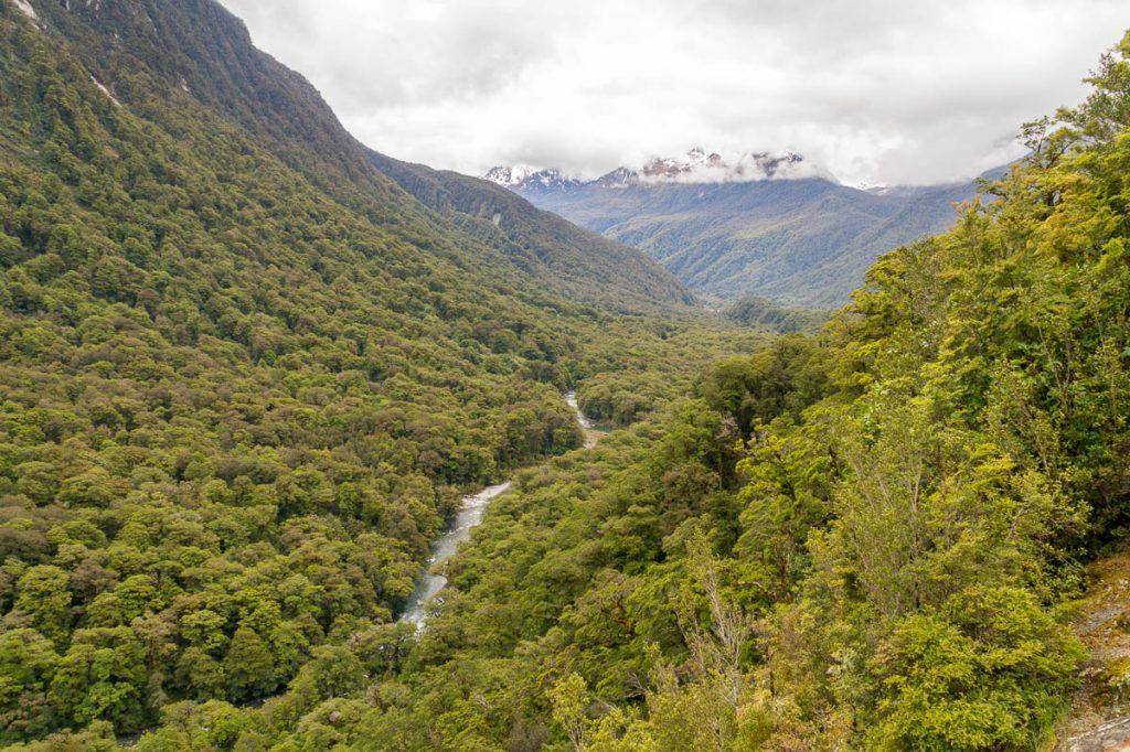 Hollyford Rivier,Fiordland National Park, Southland, Nieuw Zeeland (2011)