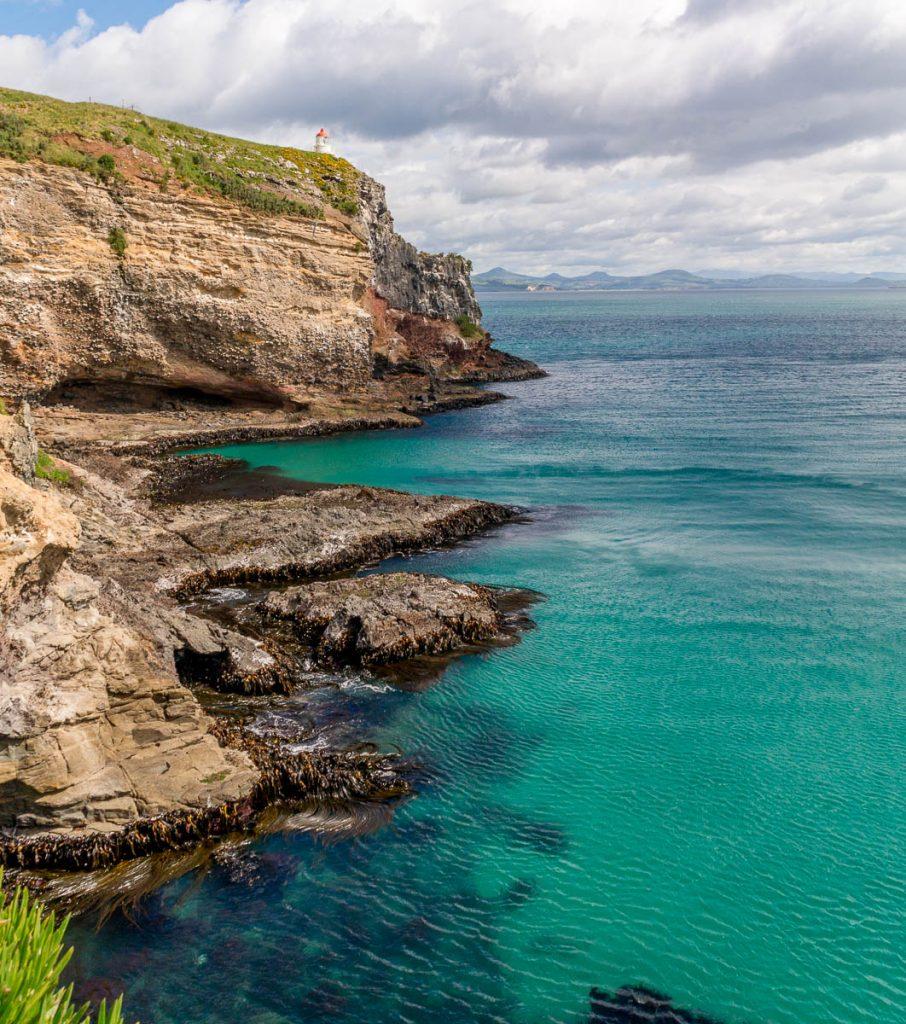 Wat een uitzicht!,Otago Peninsula, Dunedin, Otago, Nieuw Zeeland (2011)