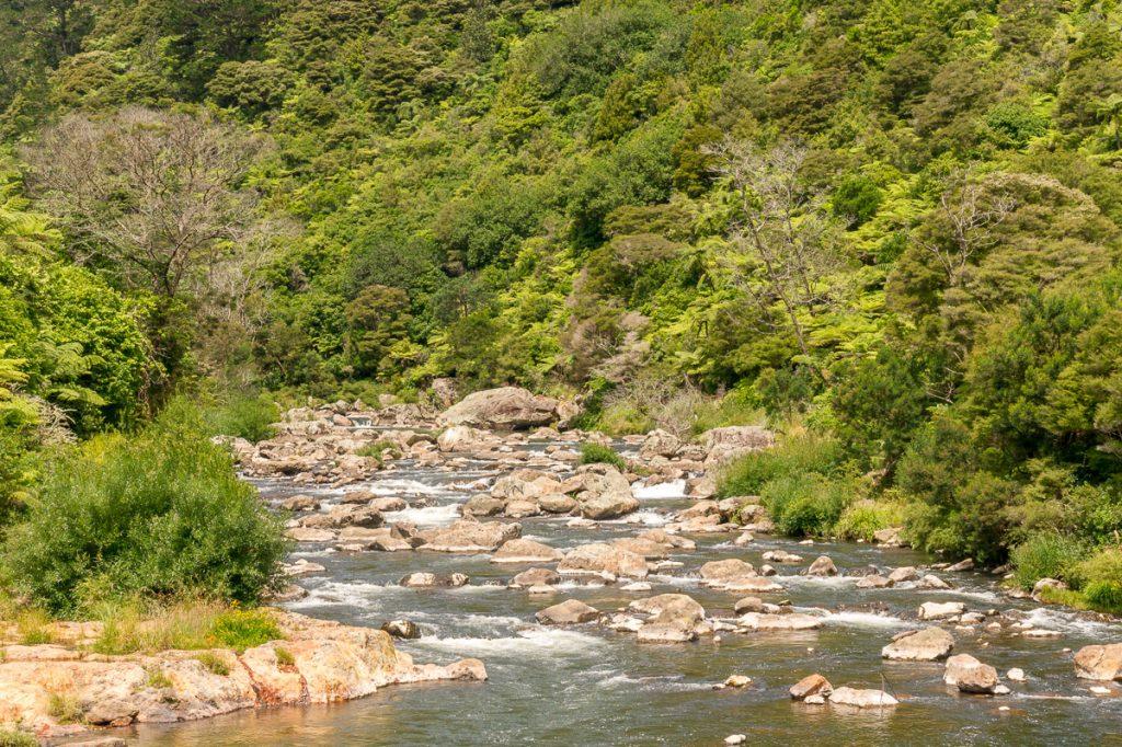 Ohinemuri Rivier,Karangahake Gorge, Karangahake, Waikato, Nieuw Zeeland (2011)