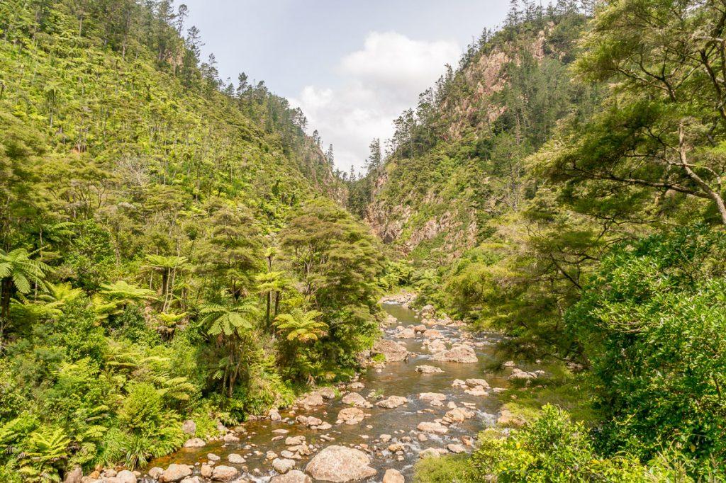 Waitawheta Rivier,Karangahake Gorge, Karangahake, Waikato, Nieuw Zeeland (2011)