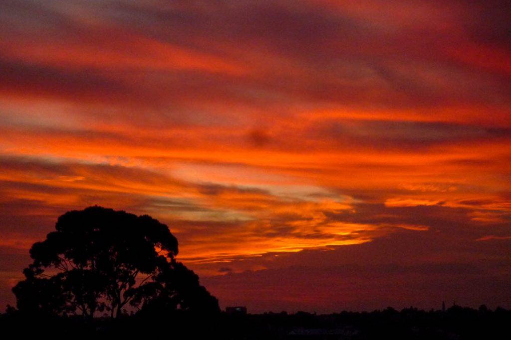 Zonsondergang,YHA Glebe, Sydney, New South Wales, Australië (2012)