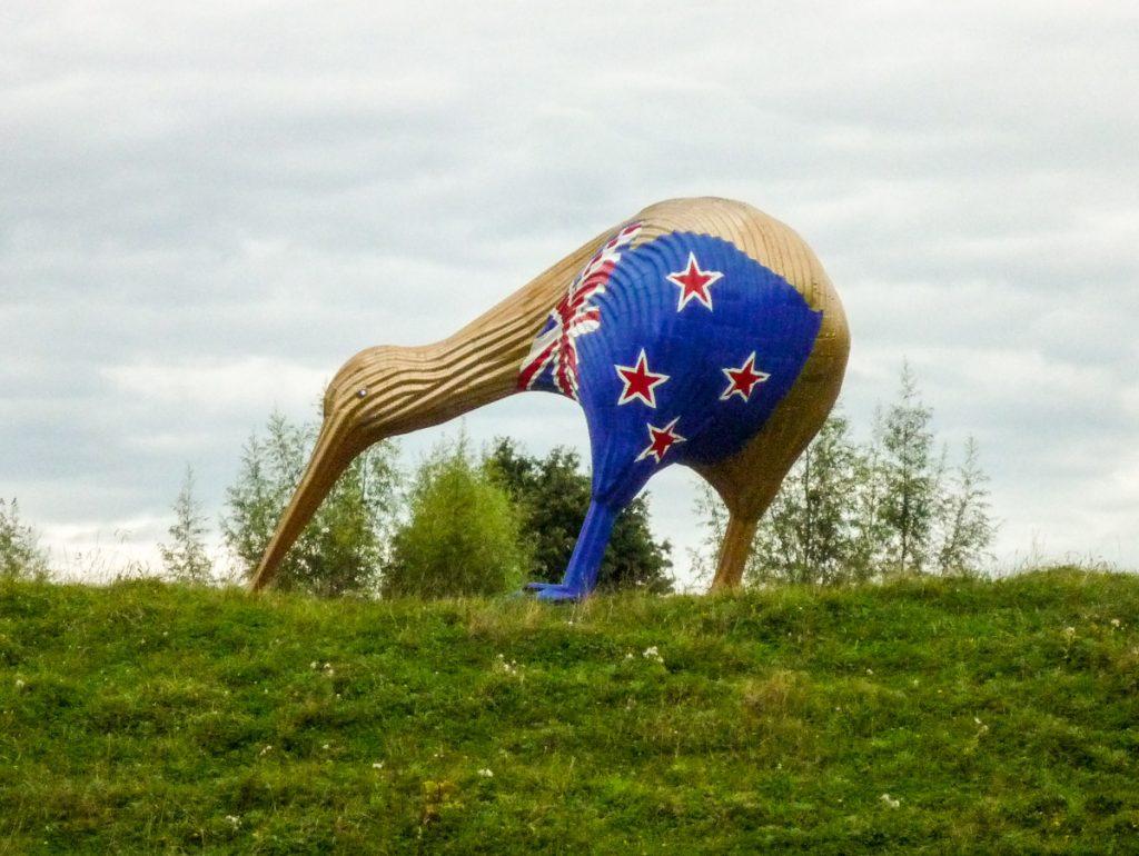 Kiwi,Otorohanga, Waikato, Nieuw Zeeland (2012)