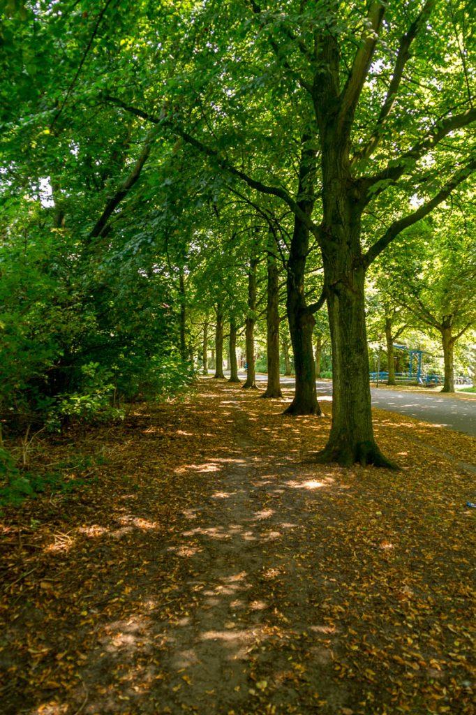 Path,Zuiderpark, Den Haag, Zuid-Holland (2014)