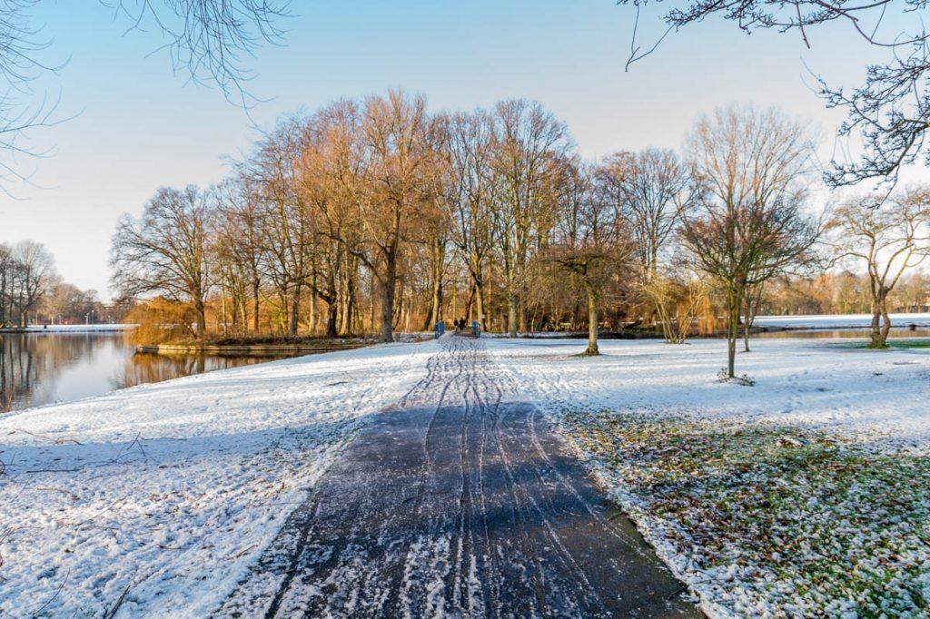 Dun laagje sneeuw,Zuiderpark, Den Haag, Zuid-Holland (2014)