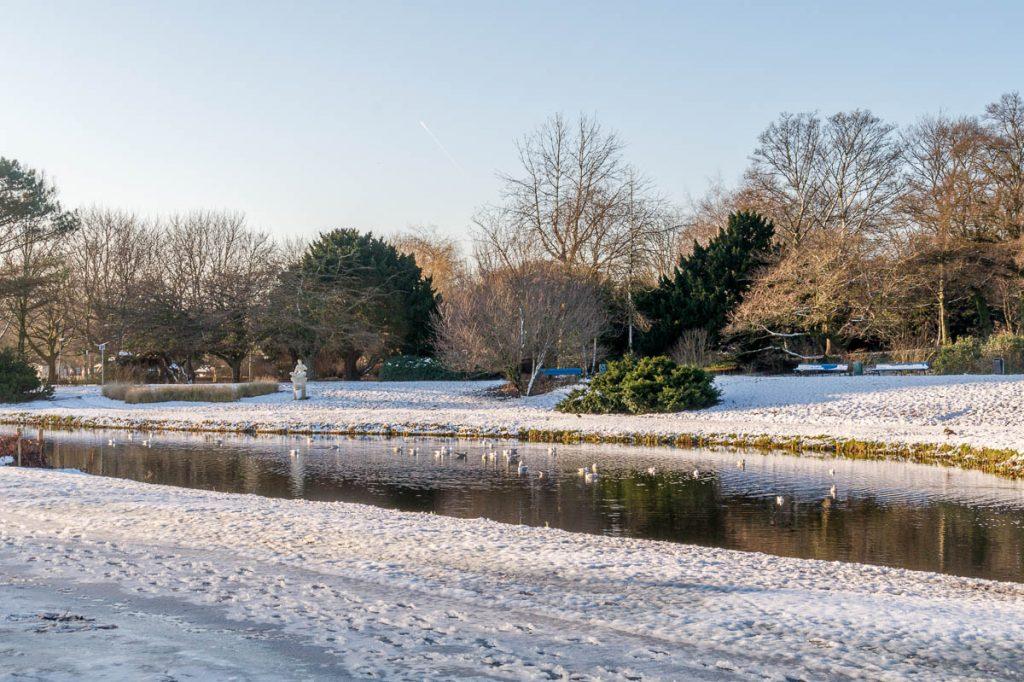 In de zon,Zuiderpark, Den Haag, Zuid-Holland (2014)
