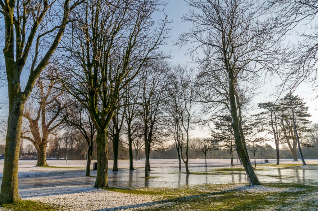Fel,Zuiderpark, Den Haag, Zuid-Holland (2014)