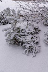 Sneeuw!!