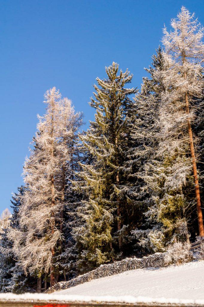 Verse sneeuw,Santa Cristina, Alto Adige, Italië (2015)